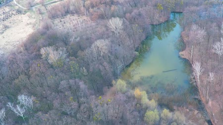 külvárosok : Flying over the river in the forest near the field
