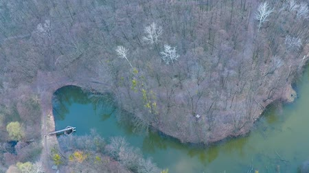 field survey : Flying over the river in the forest near the field