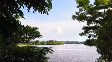 kapradina : View of the Dnieper River from the high bank, tracking shot past the tree.