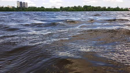 birch tree : Waves on the water and soft clouds in the sky. Kiev, Ukraine Stock Footage