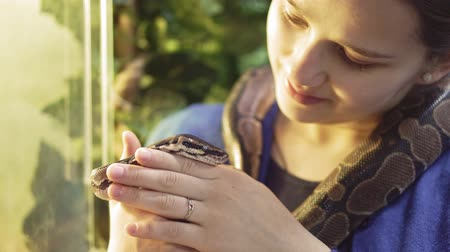 boa : nature girl holding snake at zoo enjoying excursion to wildlife sanctuary student having fun learning about reptiles 4k Stock Footage