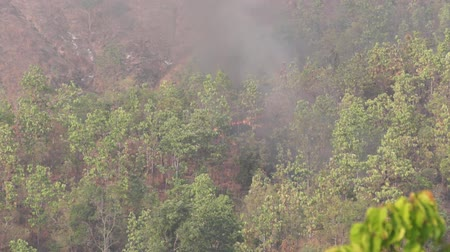 Wildfire Chiangmai Polution Wideo