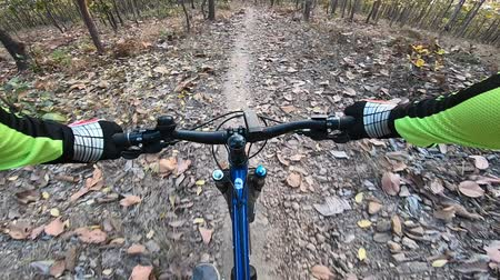 Actiecamera fietsen in bos op mountainbikespoor Stockvideo