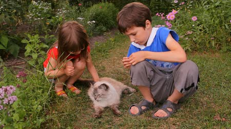 prowl : children, brother and sister stroking a cat in nature