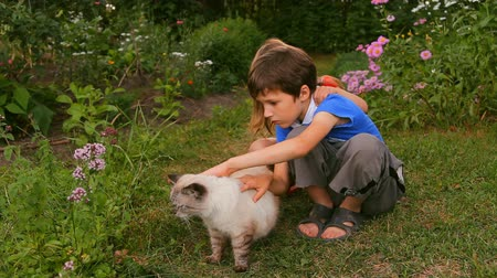 pisi : children, brother and sister stroking a cat in nature