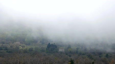 lovcen : Thick fog in the forest and in the mountains in the village of Njegusi, on Mount Lovcen in Montenegro.
