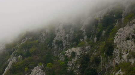 enchanted : Fog in the rocky mountains of Montenegro.