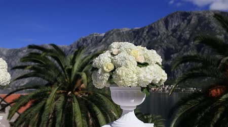 hortênsia : Hydrangea flowers in a pot. Wedding decorations.