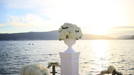 hortensia : Hydrangea flowers in a pot. Wedding decorations.