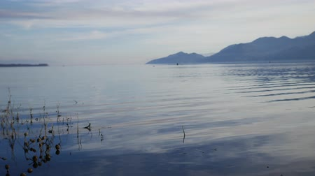 sérvia : Skadar Lake in Montenegro. The largest freshwater lake in the Balkans.