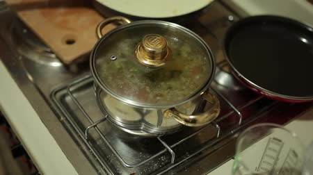 rosół : Soup in a pot on the stove. Cooking food. Boil soup. Wideo