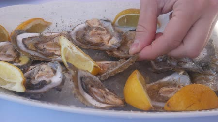oysters : Mussels in a plate with lemons in a restaurant. Stock Footage