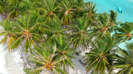 Coconut palms from the beach with sand and small boats on turquoise ocean 影像素材