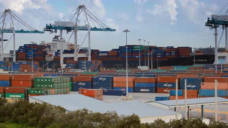 ithalat : Miami, Fl, USA - APRIL 13, 2017: Container terminal with port cranes in Miami, Florida. Stok Video