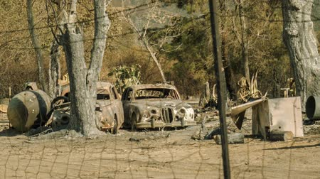 стены : Burned out Cars - Two burned out cars after a wildfire. Стоковые видеозаписи