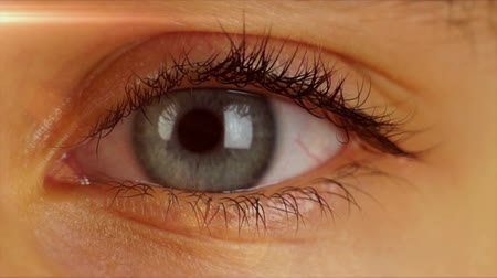 olhos castanhos : Human Eye Blinks and Looks Around the Circle