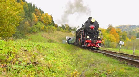 silnik : Old Steam Engine Train Leaving Tunnel Wideo