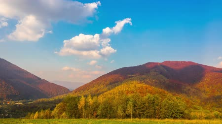 Autumn Mountain Landscape with Colorful Trees, Fast Fluffy Clouds and Shadows. Timelapse. Stok Video