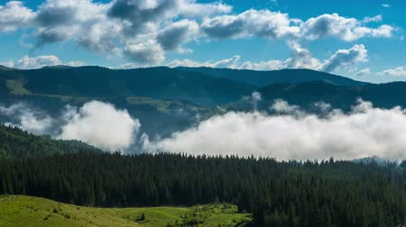 Misty Morning in the Mountains. Fog and Cloud Mountain Valley Landscape.