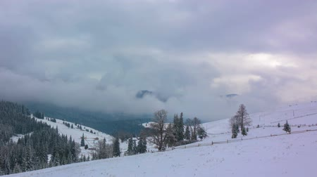 The Winter Mountain Forest on the Background of Dramatic Cloudy Sky. Timelapse.