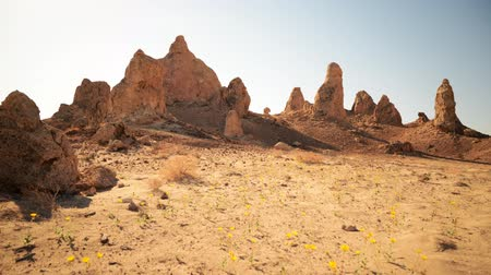 trona : Motion control dolly time lapse footage with tilt down motion of desert flowers and rock formations in Trona Pinnacles