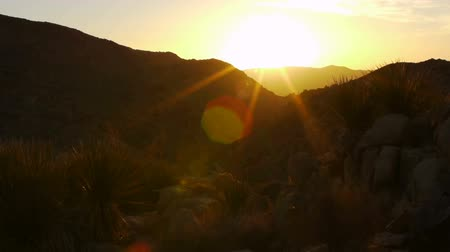 bouldering : Desert Sunrise Time Lapse in Joshua Tree