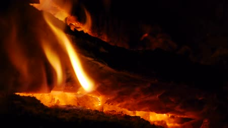 curar : Bonfire Close Up Stock Footage