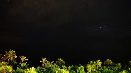 uklidňující : Astrophotography Time Lapse of Milky Way Galaxy  Moon Rise over Tropical Jungle