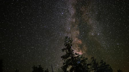árvores : Astrophotography Time Lapse Milky Way Galaxy over Alpine Forest Pan Right