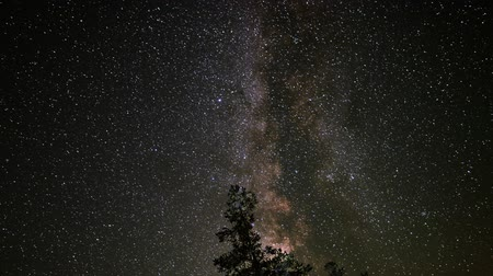 perseids : Astrophotography Time Lapse Milky Way Galaxy over Alpine Forest Zoom Out