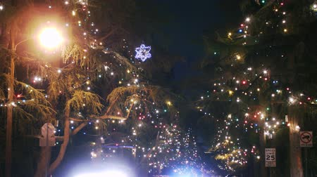 ailelerin : Christmas Illumination Time Lapse Tilt Up Stok Video
