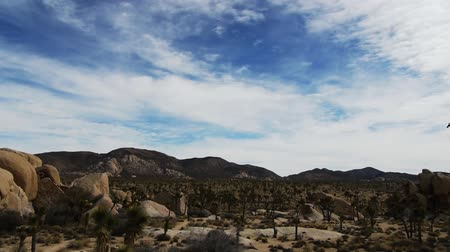 bouldering : Joshua Tree High Desert Landscape Time Lapse Stock Footage
