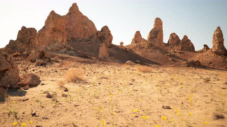 trona : 4K Motion control dolly time lapse footage with pan left  motion of desert flowers and rock formations in Trona Pinnacles California