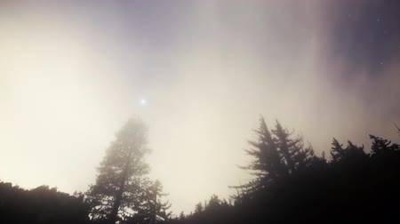 atmosphere : Astrophotography Time Lapse of Cloudscape over Alpine Forest