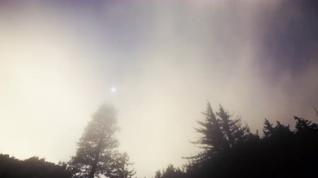 sinema : 4K Astrophotography Time Lapse of Cloudscape over Alpine Forest Tilt Up