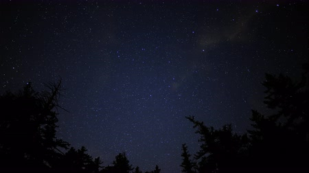 solar : 4K astrophotography time lapse with tilt down motion of starry sky over alpine pine tree forest in Crystal Lake, California