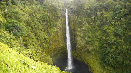sagrado : Sacred Hawaiian Waterfalls Akaka Falls in Big Island