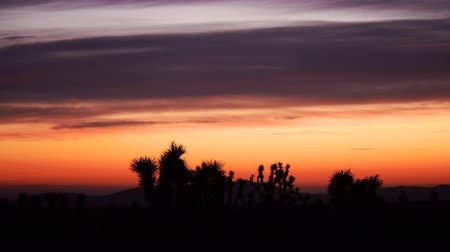 небесный : Time lapse footage with zoom out motion of heavenly sunrise over desert landscape in Southern California