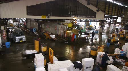 Footage of Tsukiji Fish Market district in Tokyo, Japan -panoramic tracking wide shot- Wideo