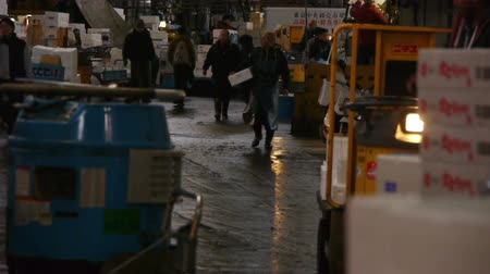 распределение : Footage of workers at Tsukiji Fish Market district in Tokyo, Japan -long shot-