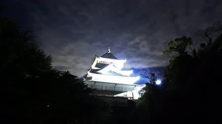 4K Astrophotography time lapse footage with zoom in  motion of historic Japanese Castle under the starry sky at night in Atami, Shizuoka, Japan Wideo