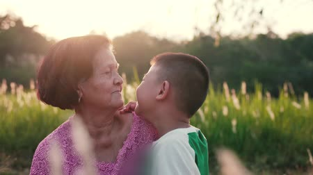jó hangulatban : Grandson kisses grandmother in the green meadow.