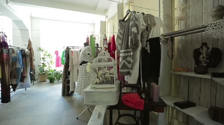 clothing : fashion, modern boutique interior, the female store,  clothes hanging  in the store