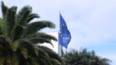 união europeia : Flag of the European Union waving in the wind on blue backgound among green palm trees Stock Footage