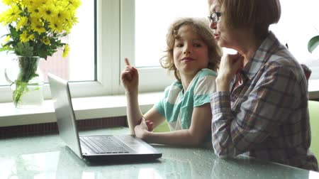 sighted : The grandmother and the grandson with interest look at the laptop screen.