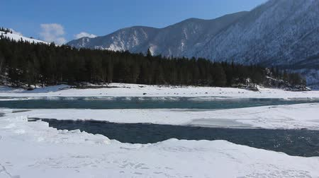 merging : Confluence of melting rivers in the early spring, Ursula River, Katun River, Altai, Russia Stock Footage
