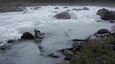 kočičí hlava : Rushing Akkem River in the morning among Altai Mountains, Russia