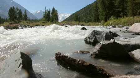 kočičí hlava : Rushing Akkem River flowing from Belukha Mountains, Altai, Dostupné videozáznamy