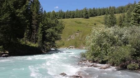 zuřivý : Kucherla River flowing among the Altai Mountains, Russia