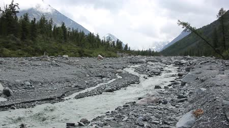 Yarlu River flowing into the gorge, Altai Mountains, Russia
